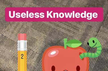 Useless Knowledge Question