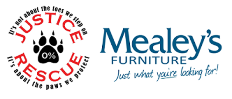 Mealey's Furniture Weather Pet!