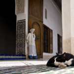 Bahia palace in Marrakech_155161763