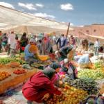Marrakech_147706934