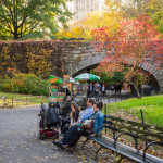 Central Park on a beautiful Autumn day_339406322