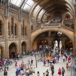 National History Museum_251020819