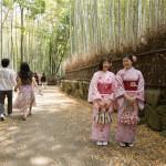 Arashiyama Bamboo forest_195274868