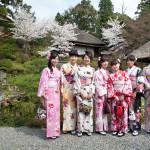 Kimono to Hanami_187292789