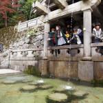 Otowa-no-taki waterfall at Kiyomizu temple_368775311