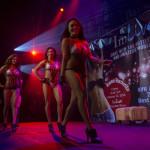 AVN Adult Entertainment Expo_173674370