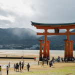 red wooden sacred torii gate at sea low tide_315196091