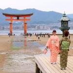 Japanese traditional suit Yukata take photo with Torii at Itsukushima island_309593663