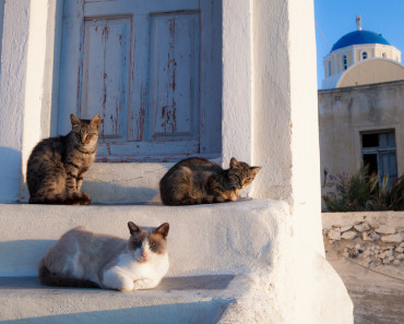 Athens, the Center of Greek Civilization