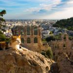 Antique Athens, Greece with Acropolis_344787551