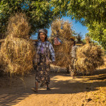 countryside near Bagan_380293411