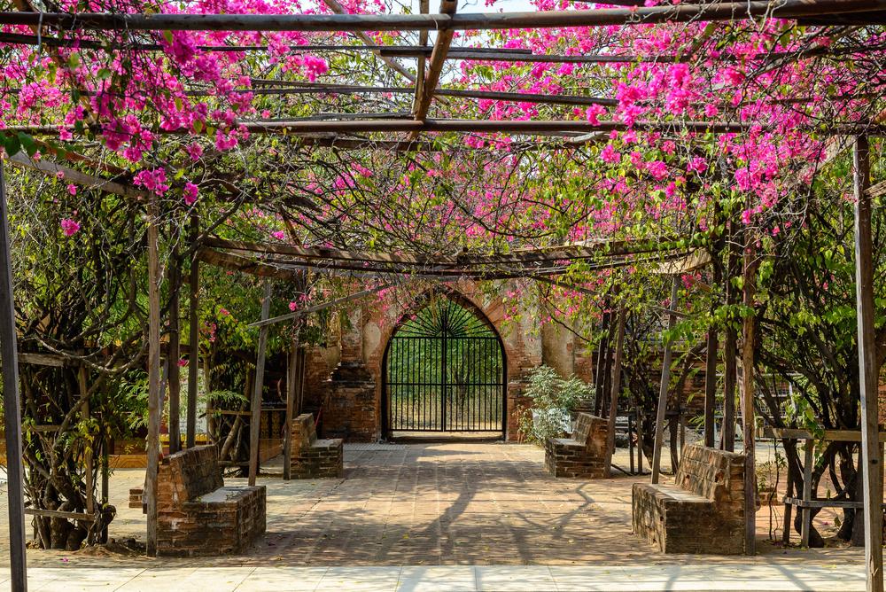 Dhammayazika Pagoda, Bagan_405789205