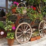 Cart with Flowers in Veliko Tarnovo Bulgaria_54742234