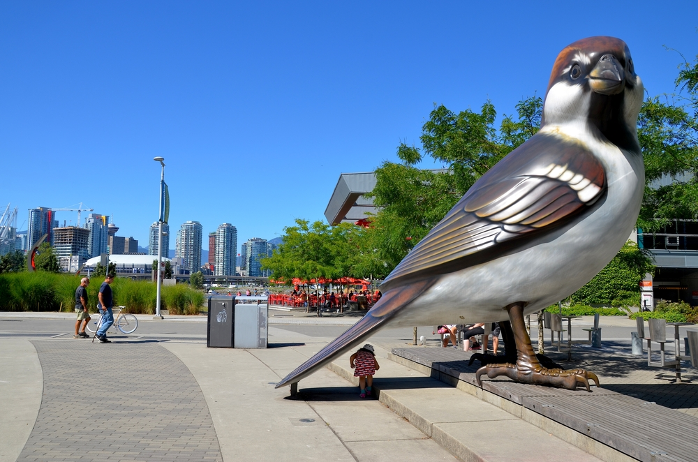 Downtown Vancouver Waterfront_211651789