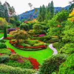 Butchart Gardens – gardens on Vancouver Island_320965514