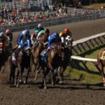 Hastings Park racecourse in Vancouver_259264760