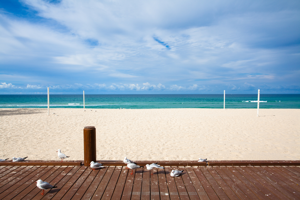Gold Coast beach_170197265