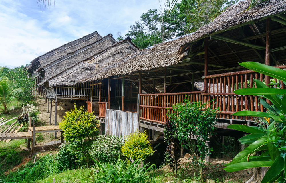 longhouse in the lush greens_402686935