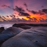 sunset tips of borneo_205392400