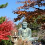 Kotokuin Temple in Kamakura_316546910