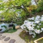 Zen garden at Hase-dera temple_413531806