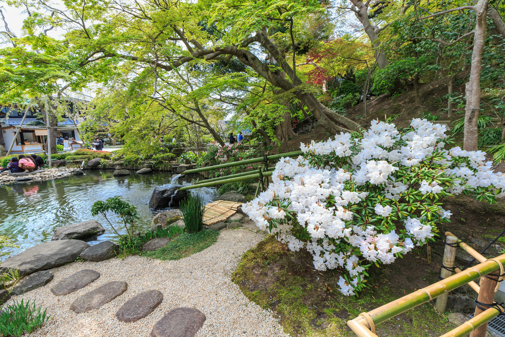 Zen garden at Hase-dera temple_413531806
