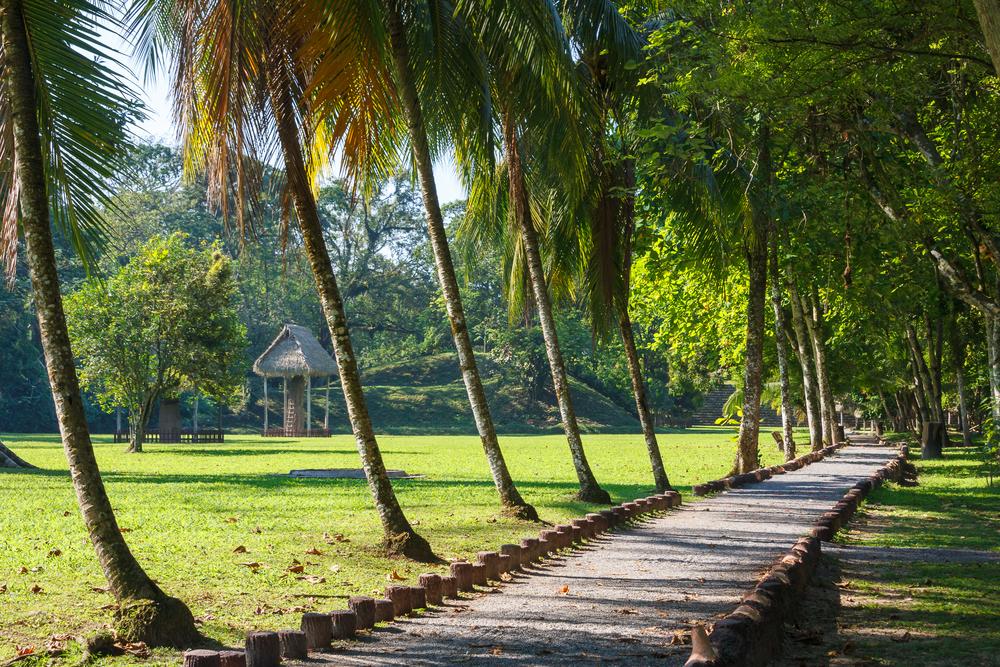 ancient Mayan city of Quirigua_378442429