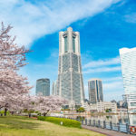 Spring in Yokohama, Japan_402501940