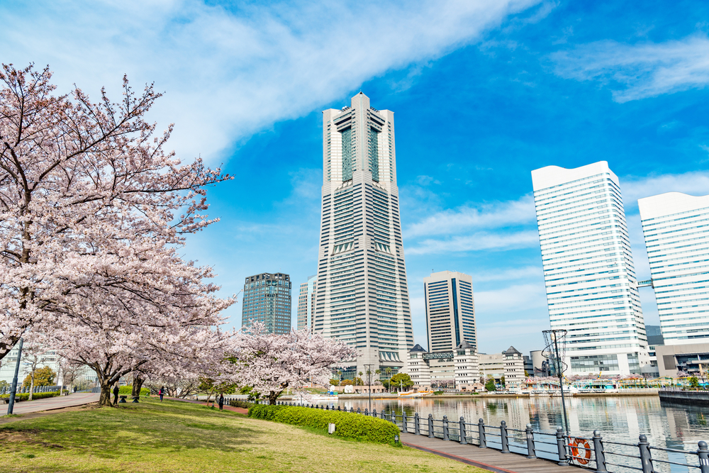 Spring in Yokohama, Japan_402501940