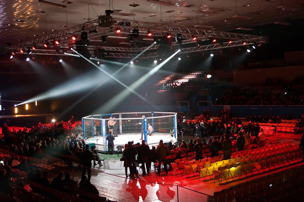 Octagon in the final competition MMA_345770975