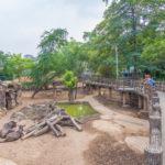 Saigon Zoo and Botanical Gardens in Ho Chi Minh City_378890173