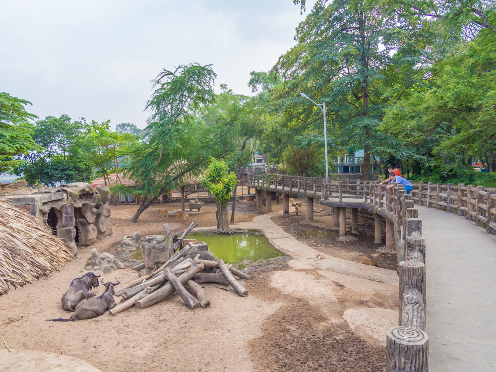 Saigon Zoo and Botanical Gardens in Ho Chi Minh City_378890173