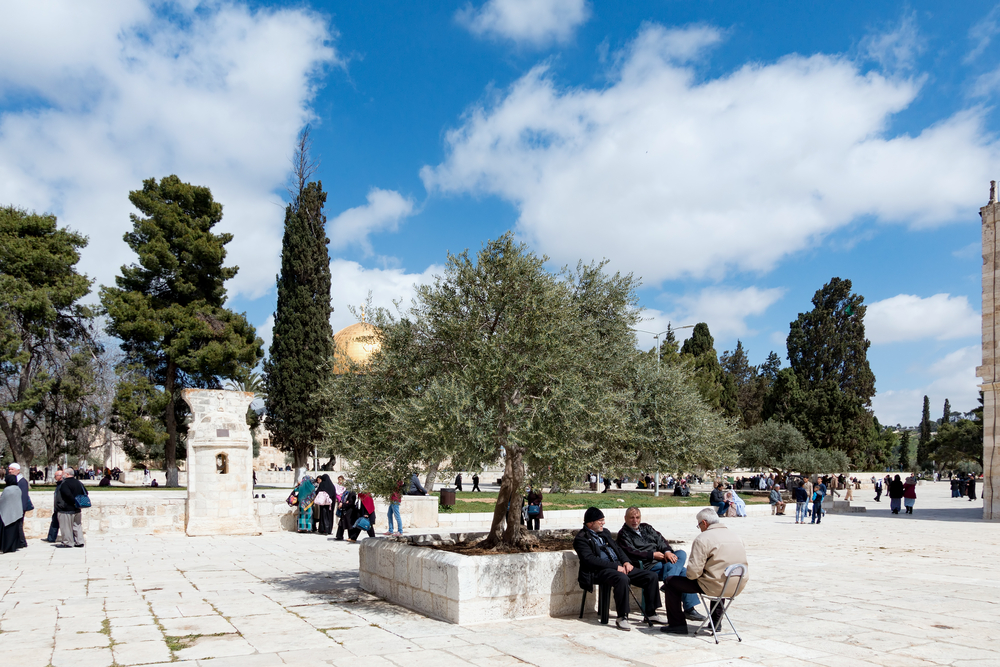 courtyard inside the compound of Al-Aqsa Mosque_438372829