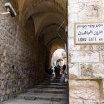 Lions Gate (Muslim Quarters)_422574115