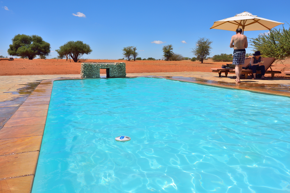 Swimming pool in Bagatelle Kalahari Game Ranch_397678903