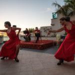 Flamenco dance at sunset _244053787