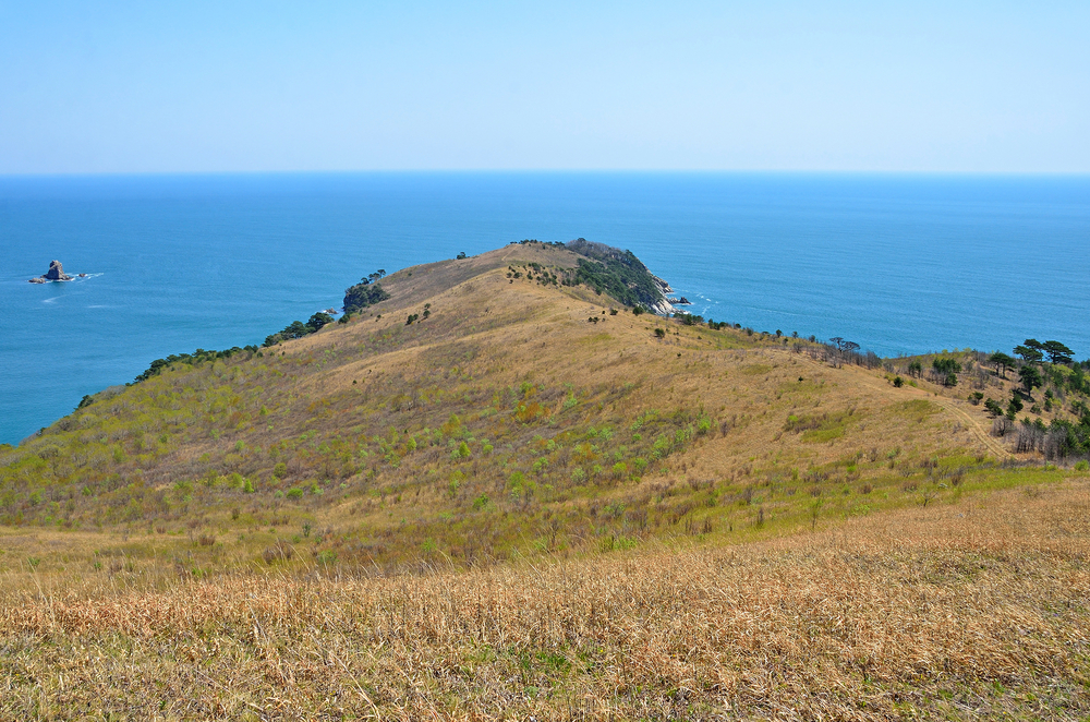 Cape of Astafiev on Gamov Peninsula_418515400