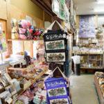 Store in Shirakawago (Shirakawa Village) world heritage village _441710161