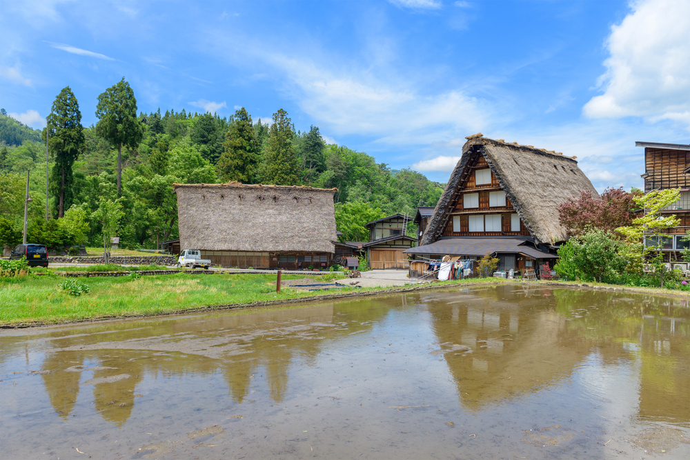 Shirakawago (Shirakawa Village) world heritage village_441703429