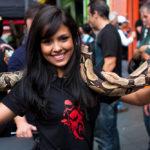 snake in a biker event_220503085