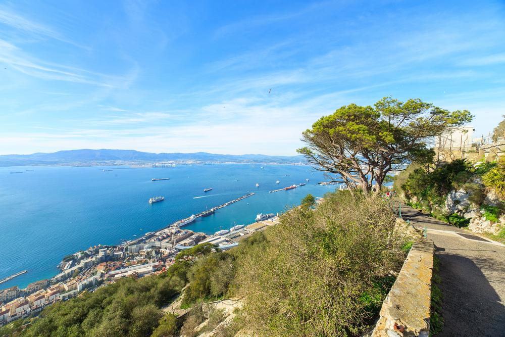 Alameda Wildlife Conservation Park in Gibraltar_242272420