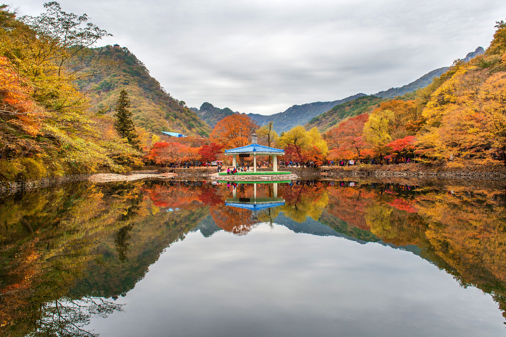 beautiful scenery around Naejangsan park_334104713