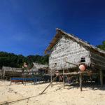 Wooden houses in Morgan, sea Gypsie_97590695