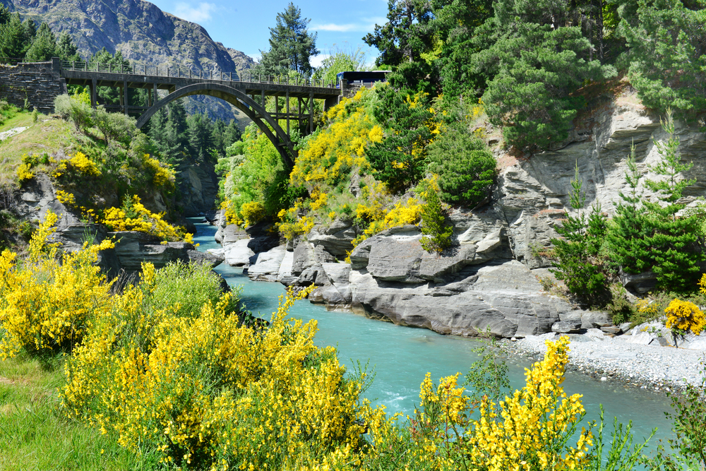 shotover river, Queenstown_330319961