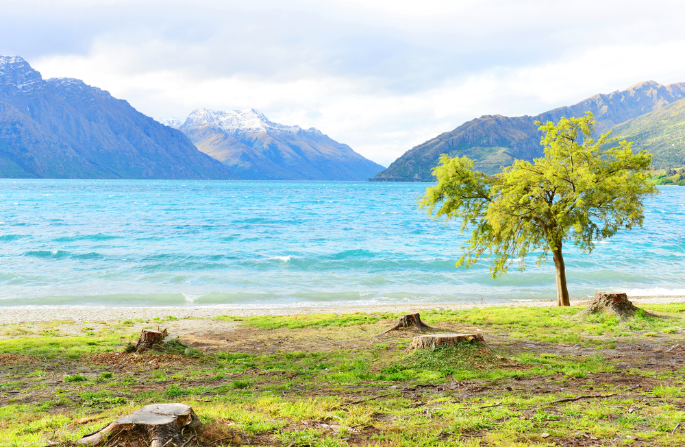 Scenic view of Lake Wakatipu with Southern Alps in background near Queenstown_377030572