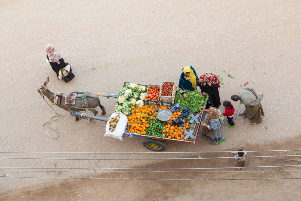 vegetables from street vendor with donkey cart_415313971