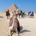 Great Pyramid of Giza_415307059