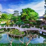 Japanese garden in Monte Carlo_232843738