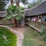 Whildlife Ranch, Oudtshoorn_397698310