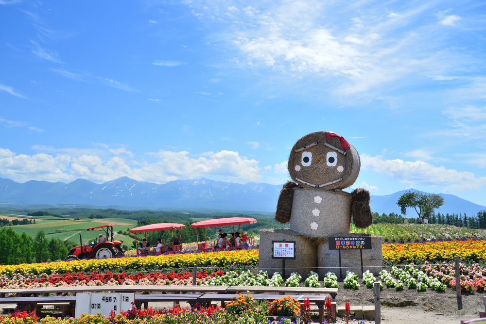 summer of Hokkaido_151279082